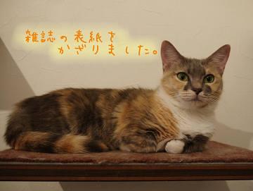 20120730_hasegawa_07.jpg