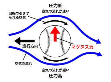 20120314_shibata_02.jpg